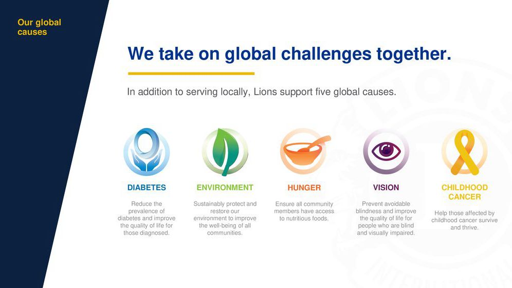 lions global causes